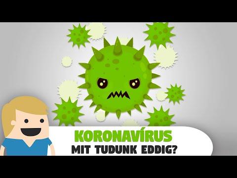 Hogyan lehet megszabadulni a pinworms-től örökre - A pinworms veszélyesek