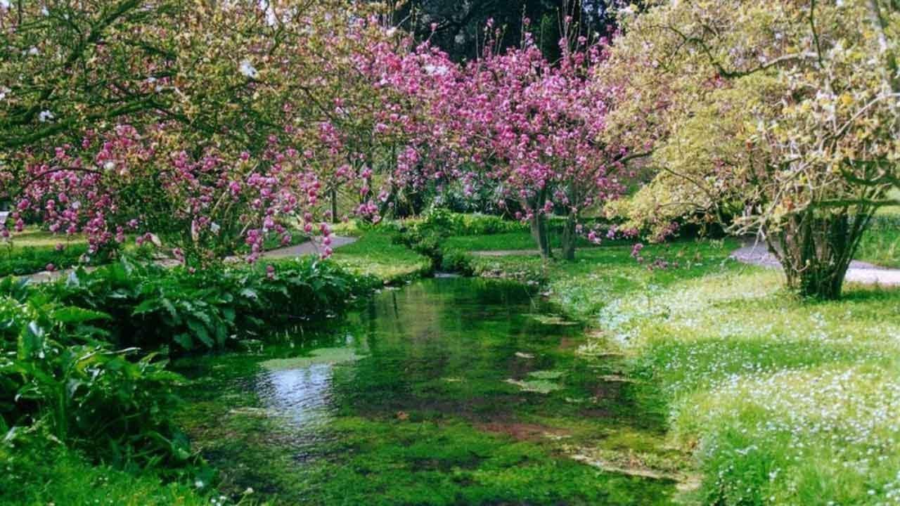 i giardini di ninfa roma antihelmintikus tabletta az emberek véleménye