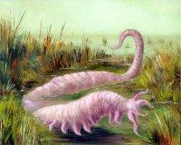 rózsaszín féreg
