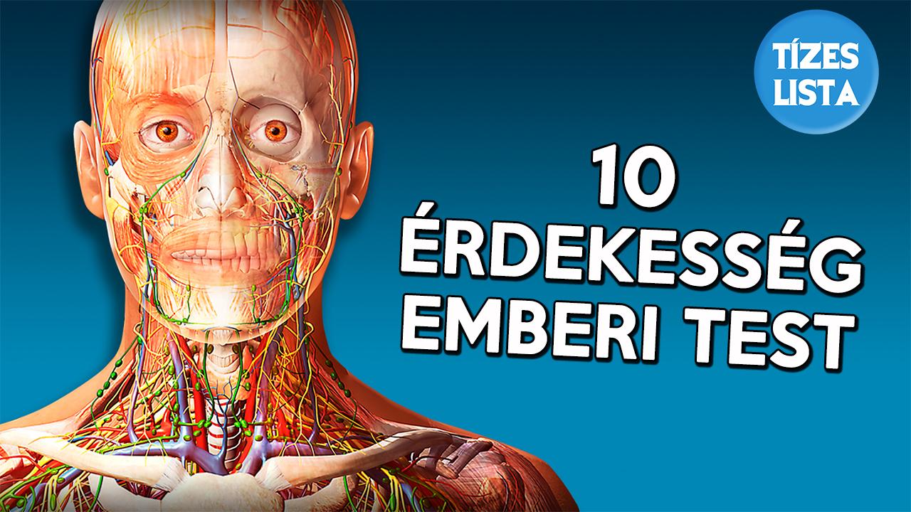 gyógyítja az emberi test parazitáit minden féreg univerzális gyógymódja