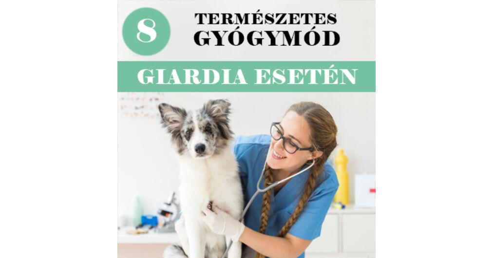 Giardiasis tünetei és kezelése - HáziPatika - Giardiasis elleni termékek