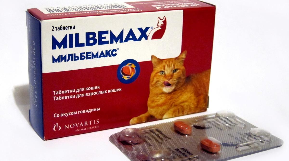 férgek megelőzésére felnőtt tablettákban