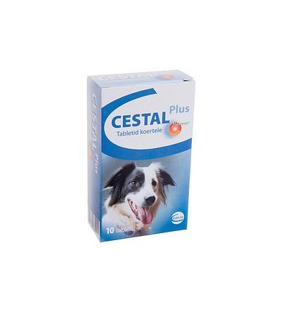 kutya féreghajtó mellékhatás férgekből és férgekből származó termékek