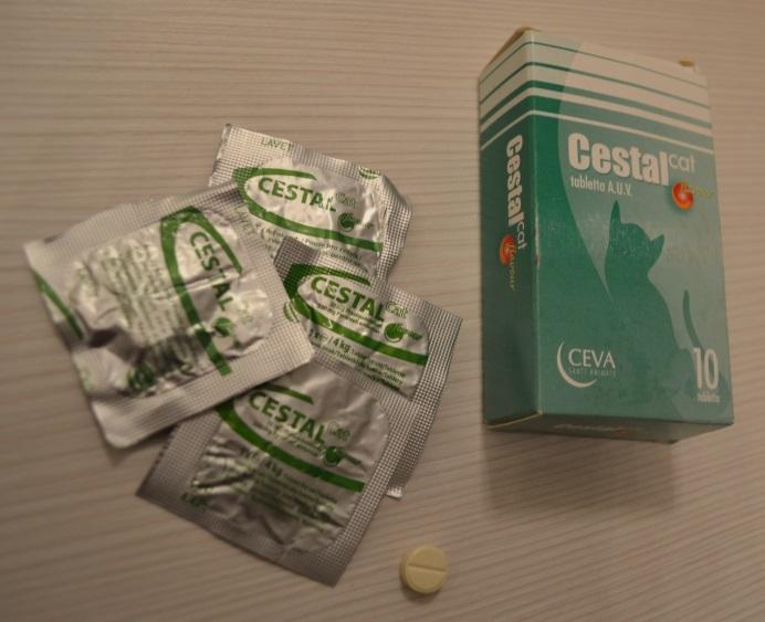 meddig hat egy féreghajtó gyógyszer