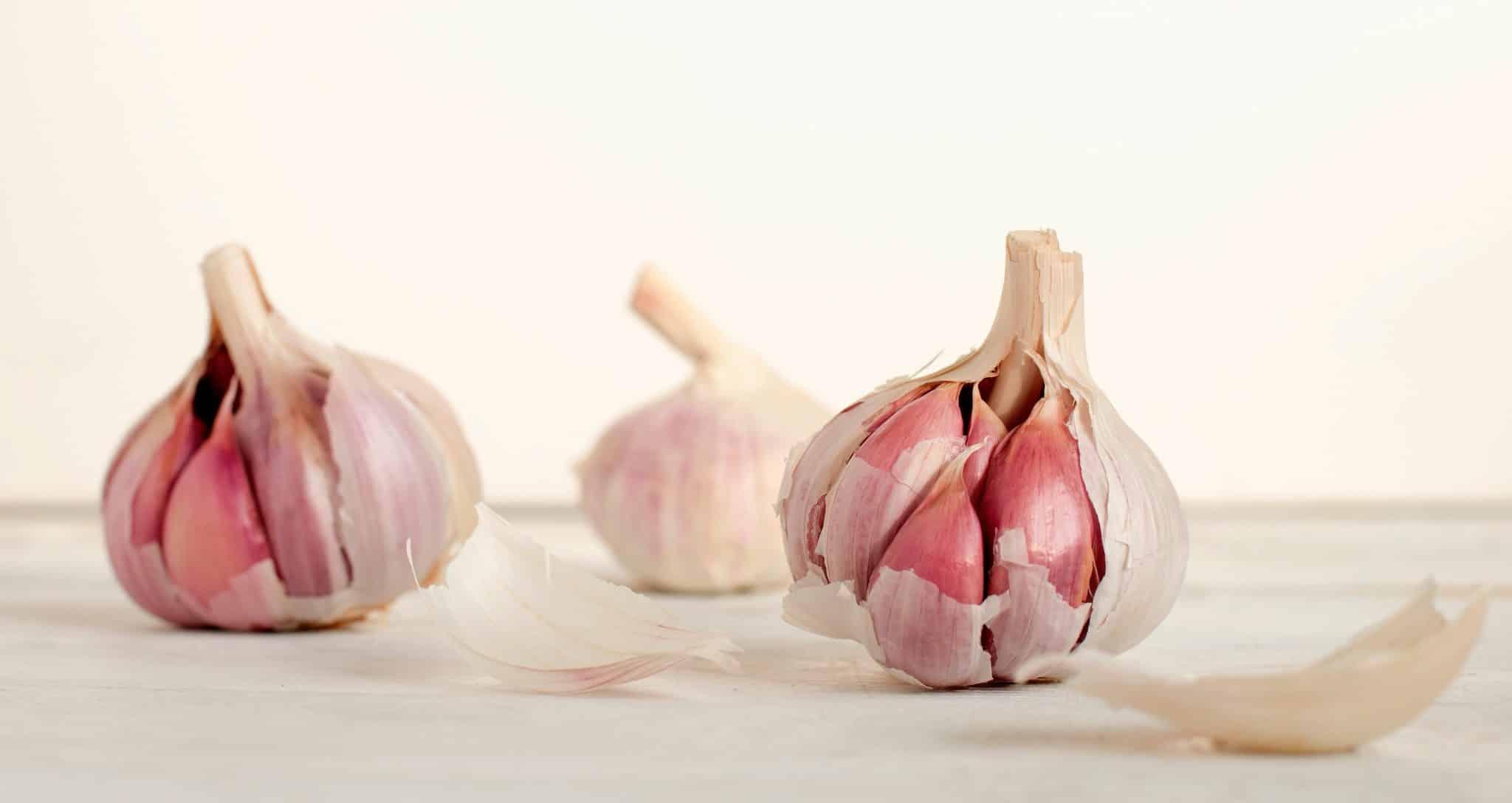 giardia raw garlic hogyan lehet hatékonyan megtisztítani a paraziták testét
