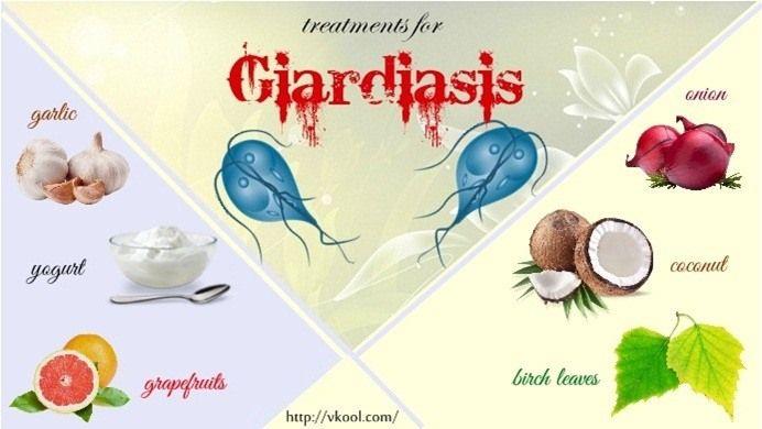 giardia raw garlic férgek előkészítése 3 éves gyermek számára