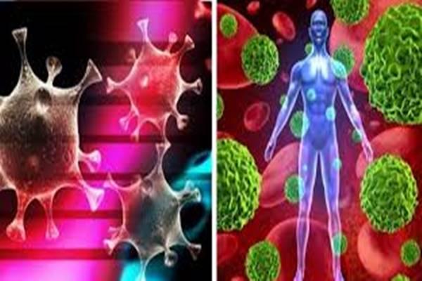szembenézni méregtelenítéssel paraziták kezelése a bélben népi gyógyszerekkel