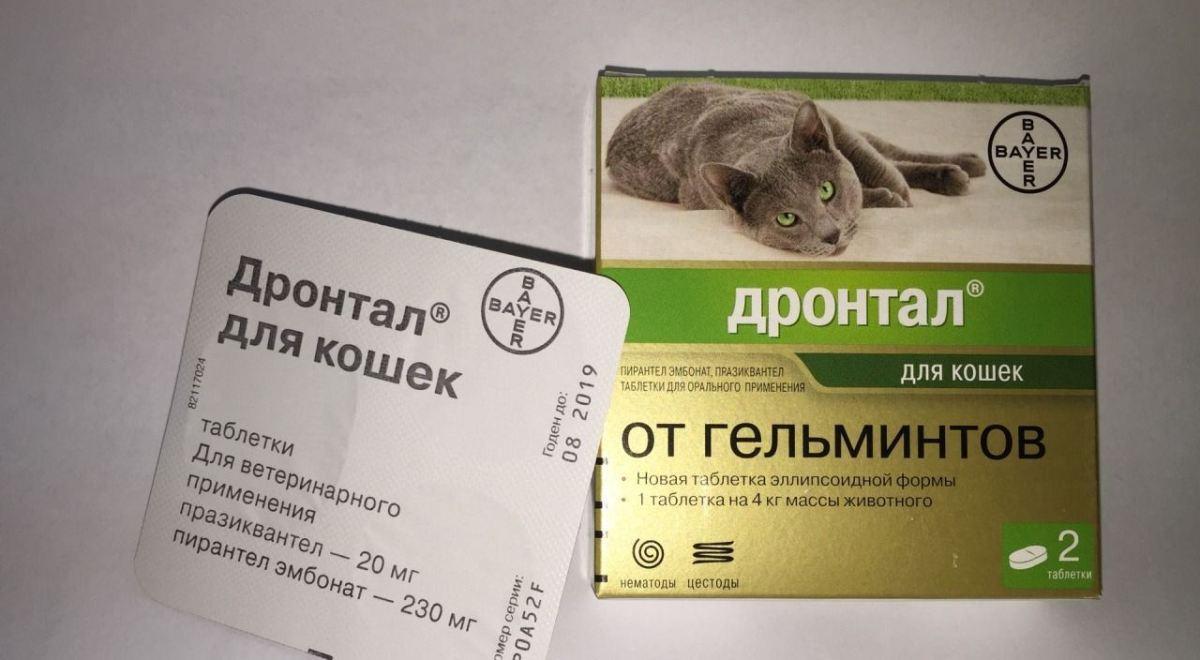 pinworm férgek szoptató anya terhes nők férgek elleni gyógyszer