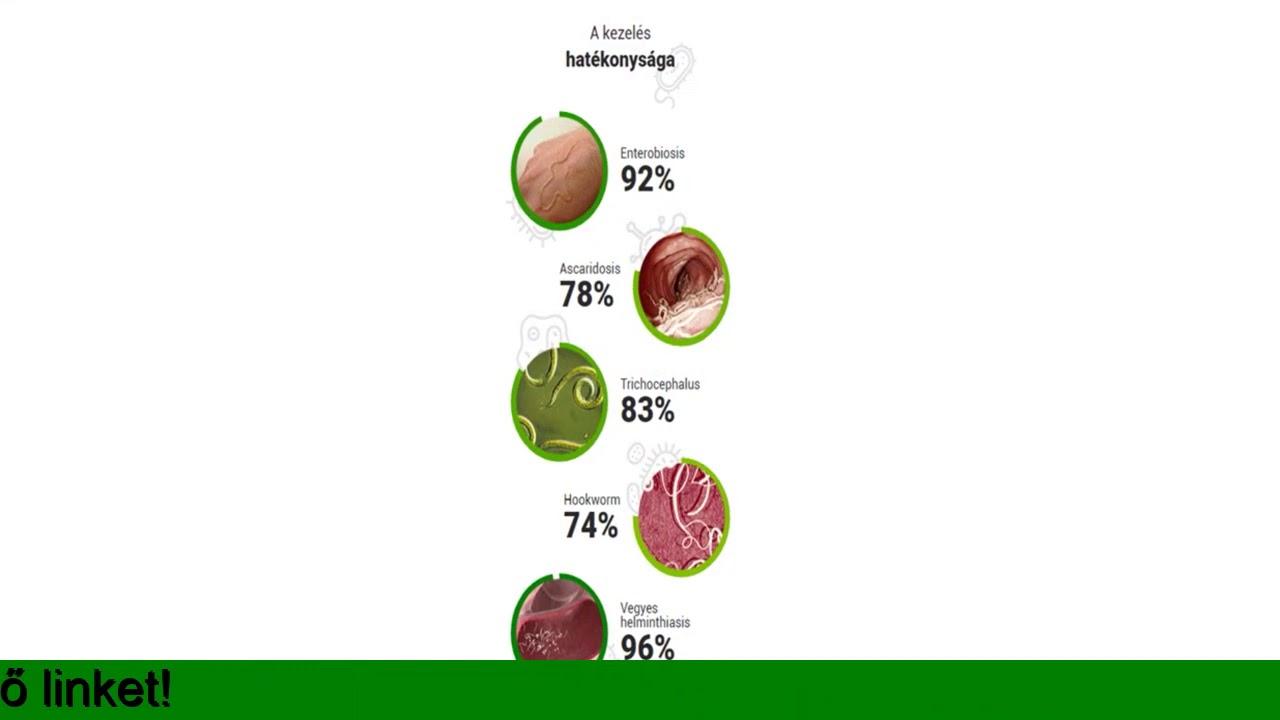szakaszos helminthiasis kezelése hpv oropharyngealis rák túlélési aránya