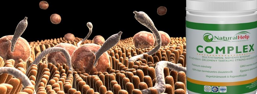 Hatékony gyógymód mindenféle parazita ellen