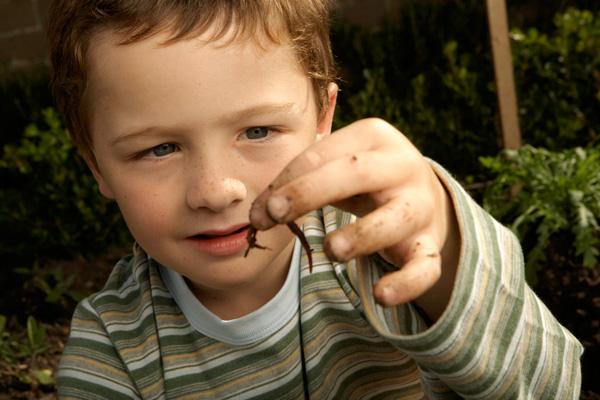 mint gyermekek férgek kezelésére, ha tiszta szem a parazitáktol